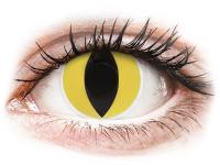Kontaktní čočky - ColourVUE Crazy Lens - Cat Eye - nedioptrické
