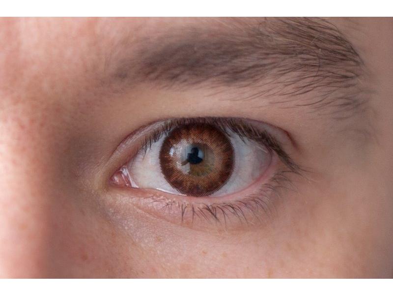 Brown na hnědém oku